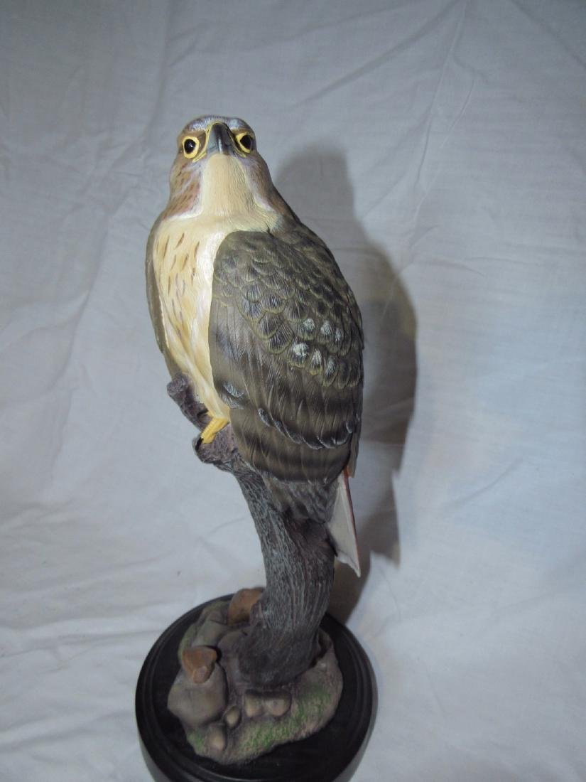 Phil Galatas Red Tailed Hawk Wood Carving - 2