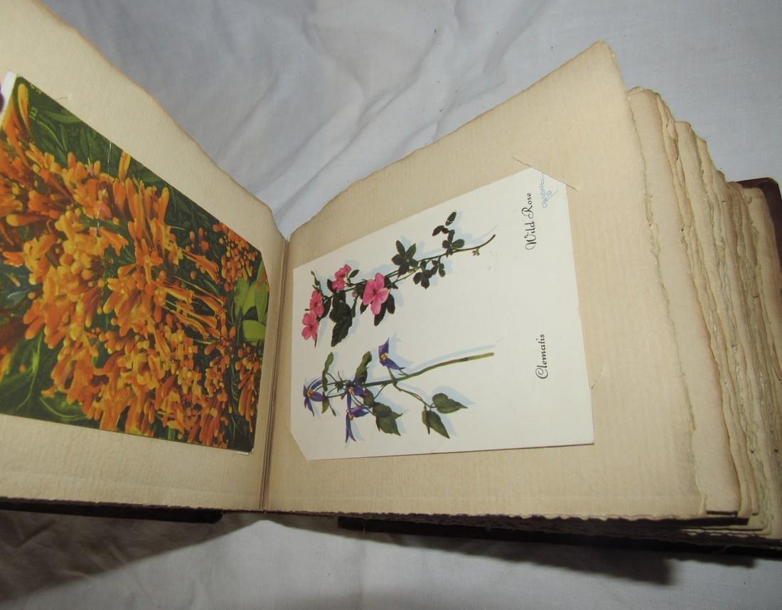 Postcard Album w/ 77 Flower Postcards - 3
