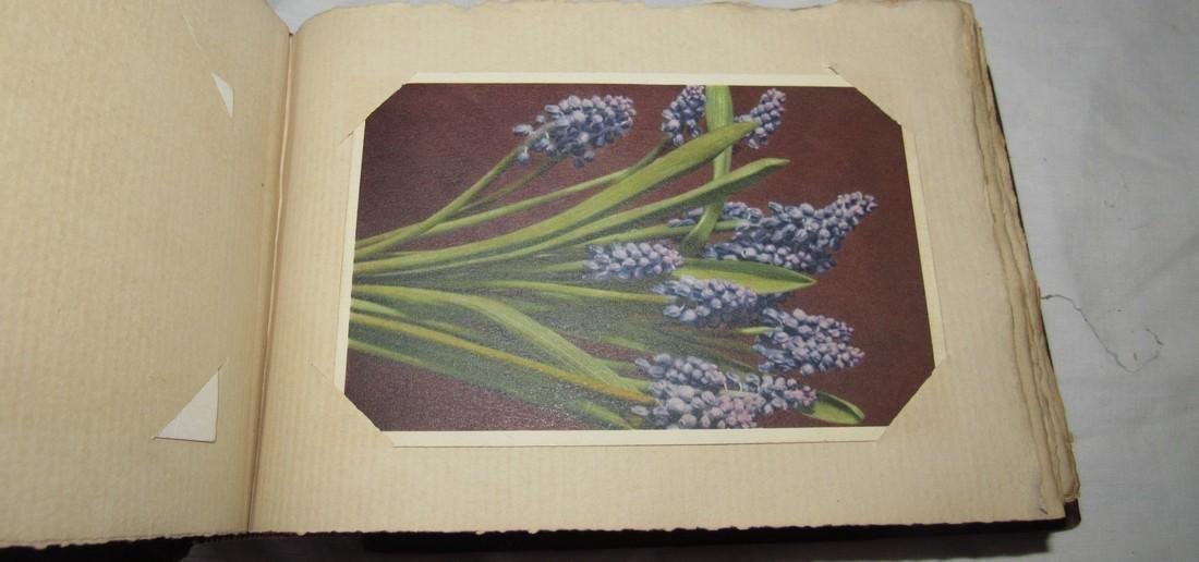 Postcard Album w/ 77 Flower Postcards - 8