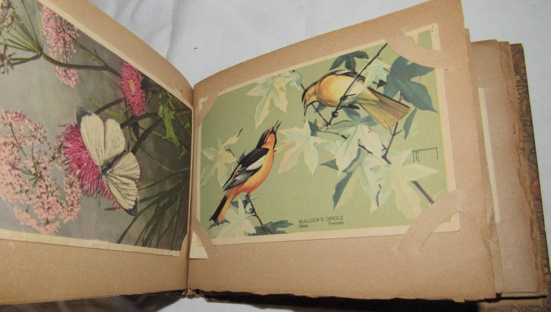 Postage Card Album w/ 99 Flower and Bird Postcards - 3