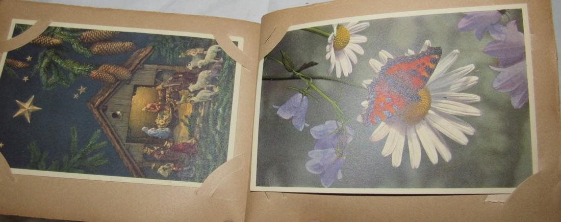 Postage Card Album w/ 99 Flower and Bird Postcards - 5