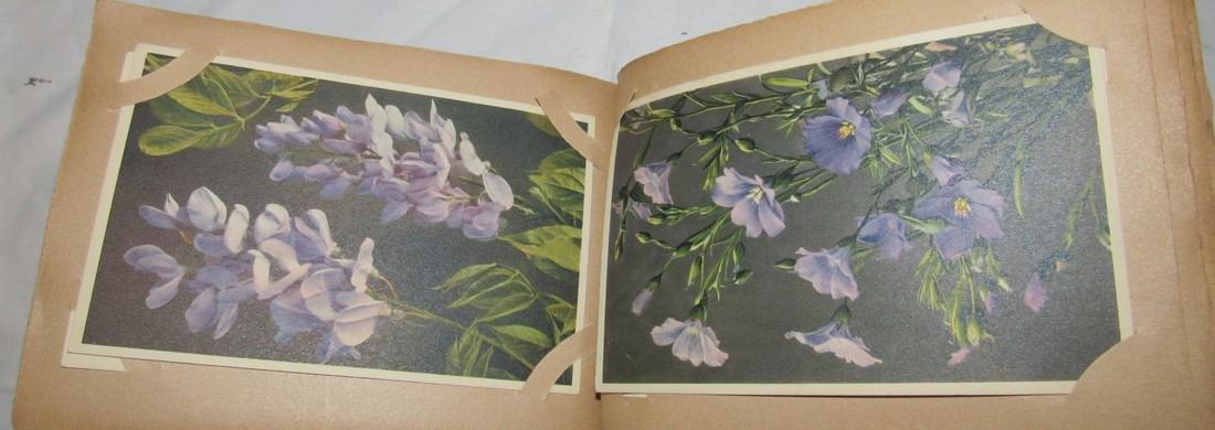 Postage Card Album w/ 99 Flower and Bird Postcards - 6