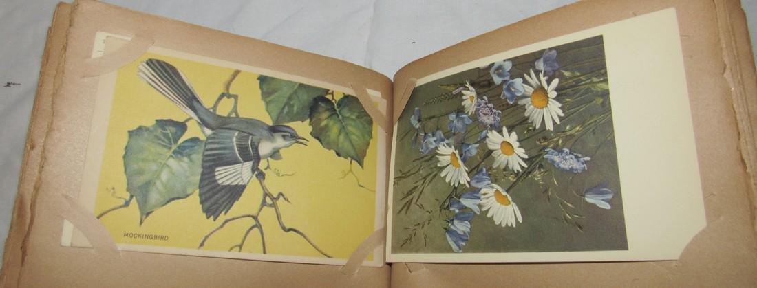 Postage Card Album w/ 99 Flower and Bird Postcards - 7
