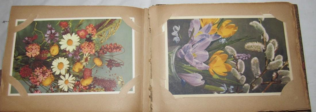Postage Card Album w/ 99 Flower and Bird Postcards - 8