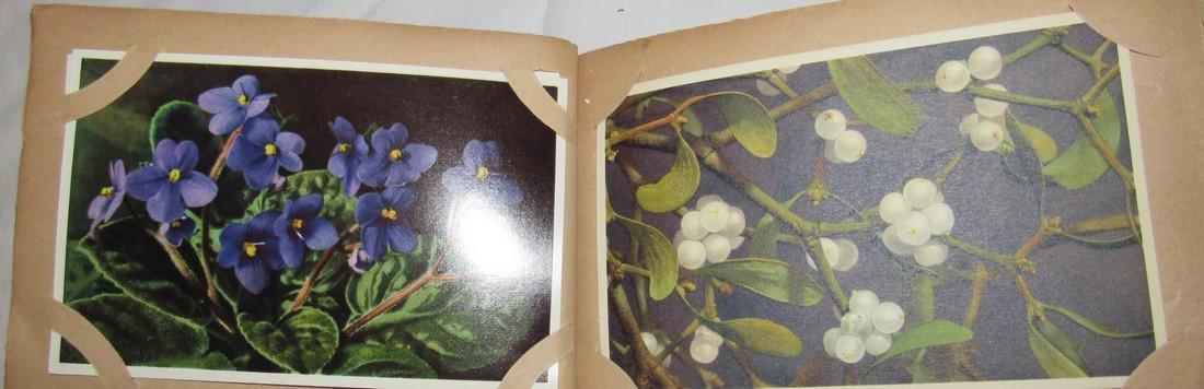 Postage Card Album w/ 99 Flower and Bird Postcards - 9