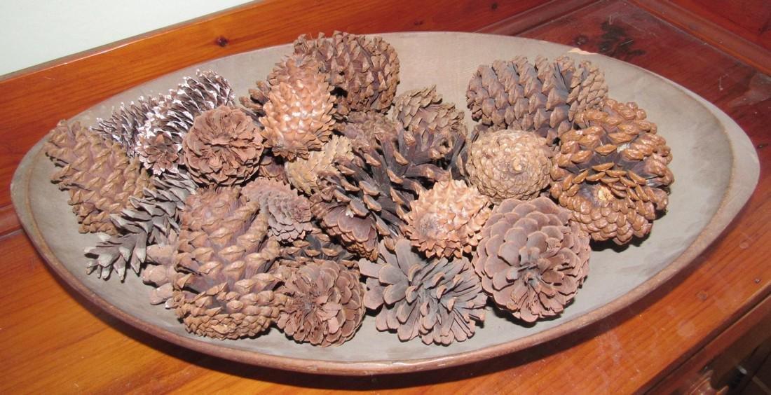 Wood Bowl - 2