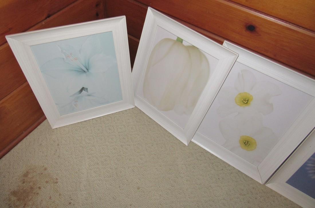 Flower Prints - 3