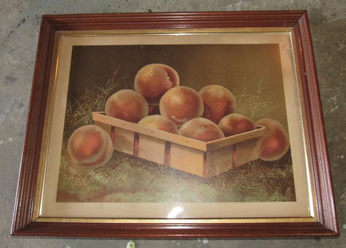 1894 J Hoover Still Life Fruit Basket Print