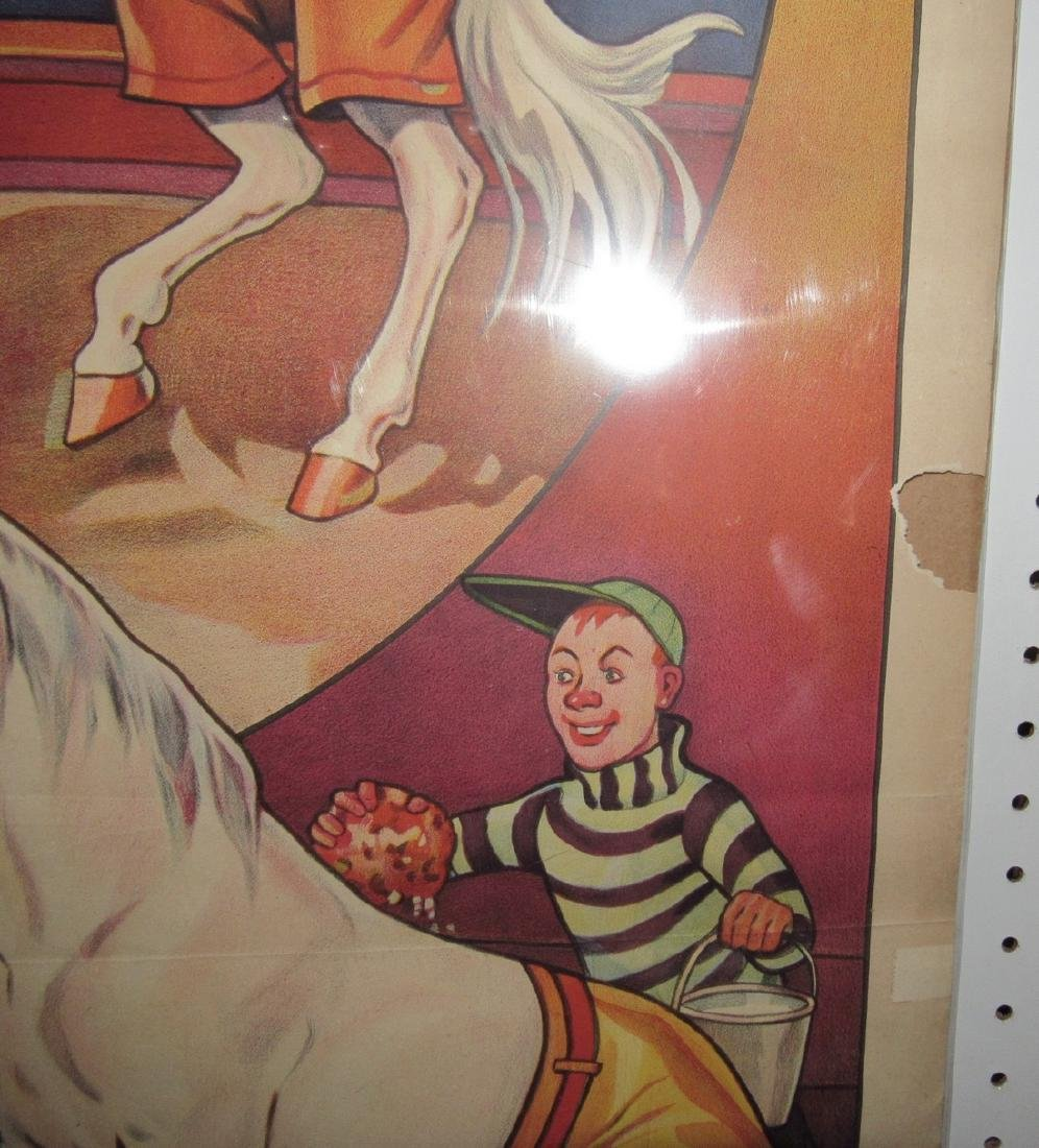 Cole Bro Circus Boxing Horse Poster - 4
