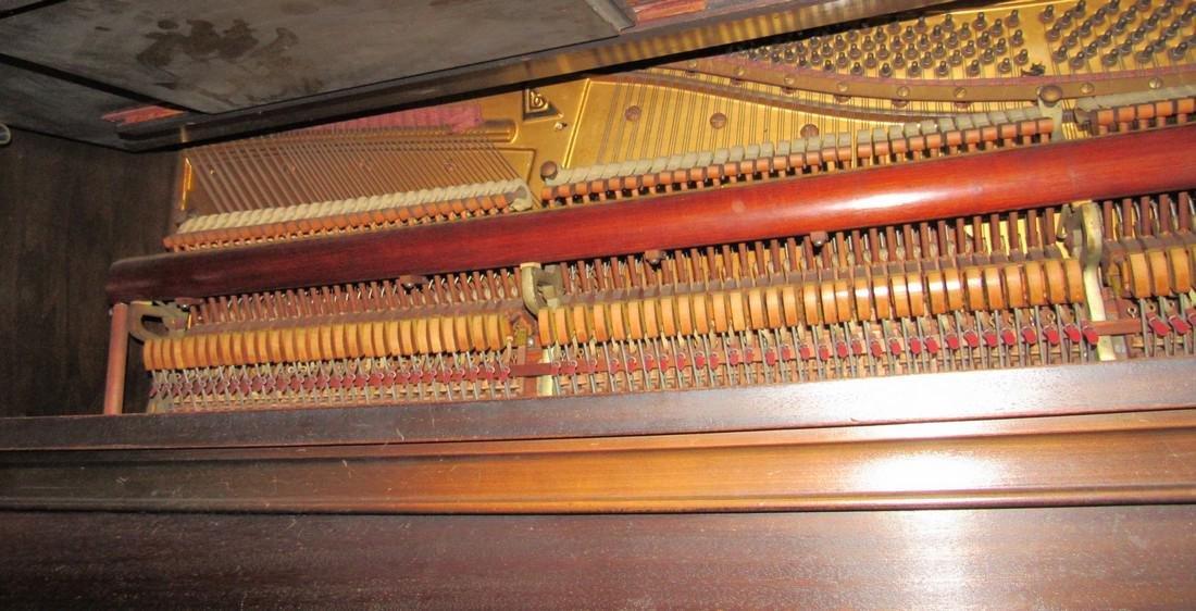 Lauter Humana Piano - 5