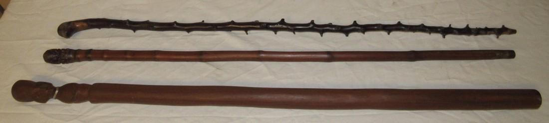 3 Canes / Walking Sticks