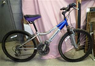 Raleigh MTN Scout Childrens Mountain Bike