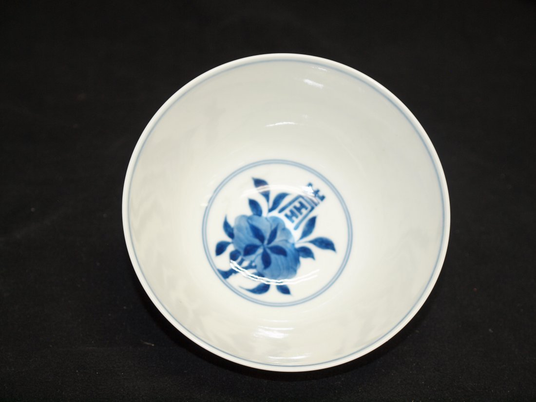 Blue & White with Longevity & Marking - 2