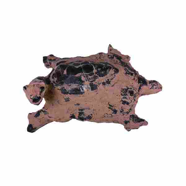 A Turtle Fossil