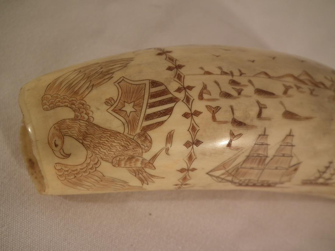 19TH C. SCRIMSHAW WHALE TOOTH - 4