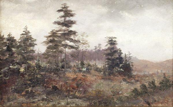 "17: Marie Starke ""Forest landscape"". 1898."