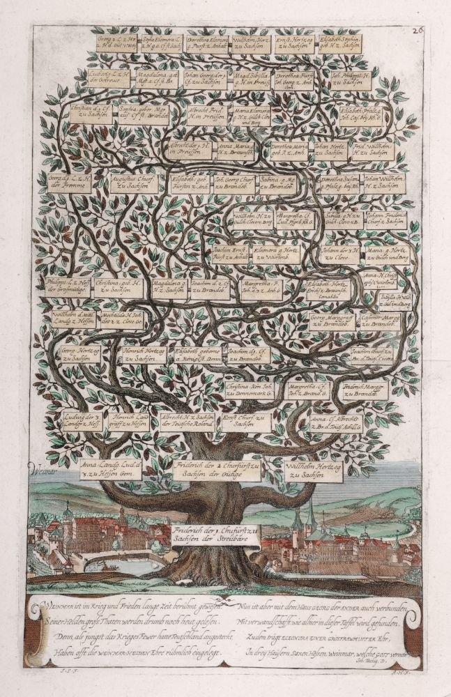 184: J. Schweitzer / A. Haelwegh. Stammbaum von Friedri