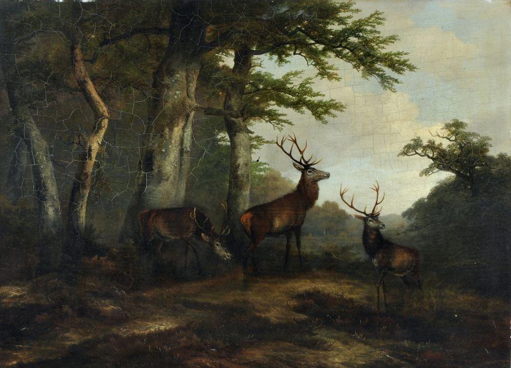 16: Georg Höhn, Rotwild auf einer Waldlichtung. Um 1850