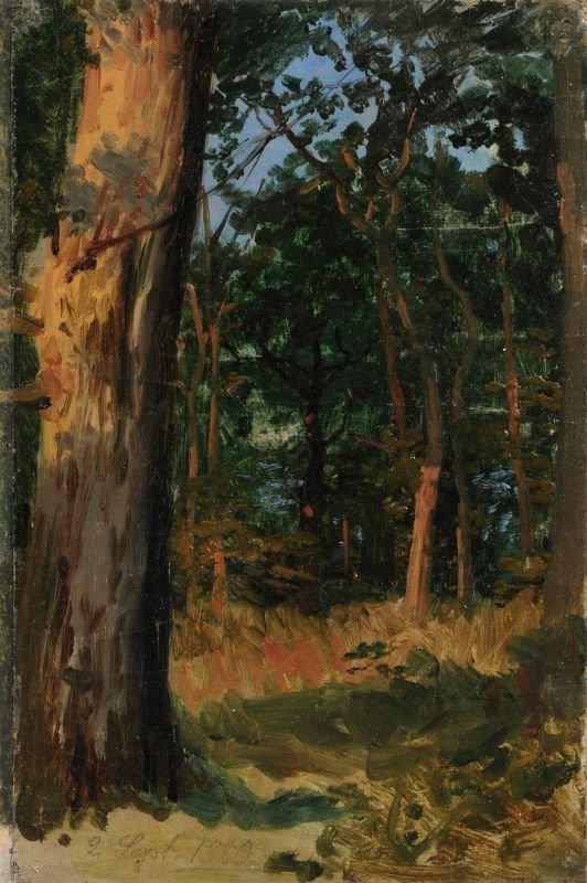 9: Carl Wilhelm Müller (zugeschr.), Kleine Waldstudie.