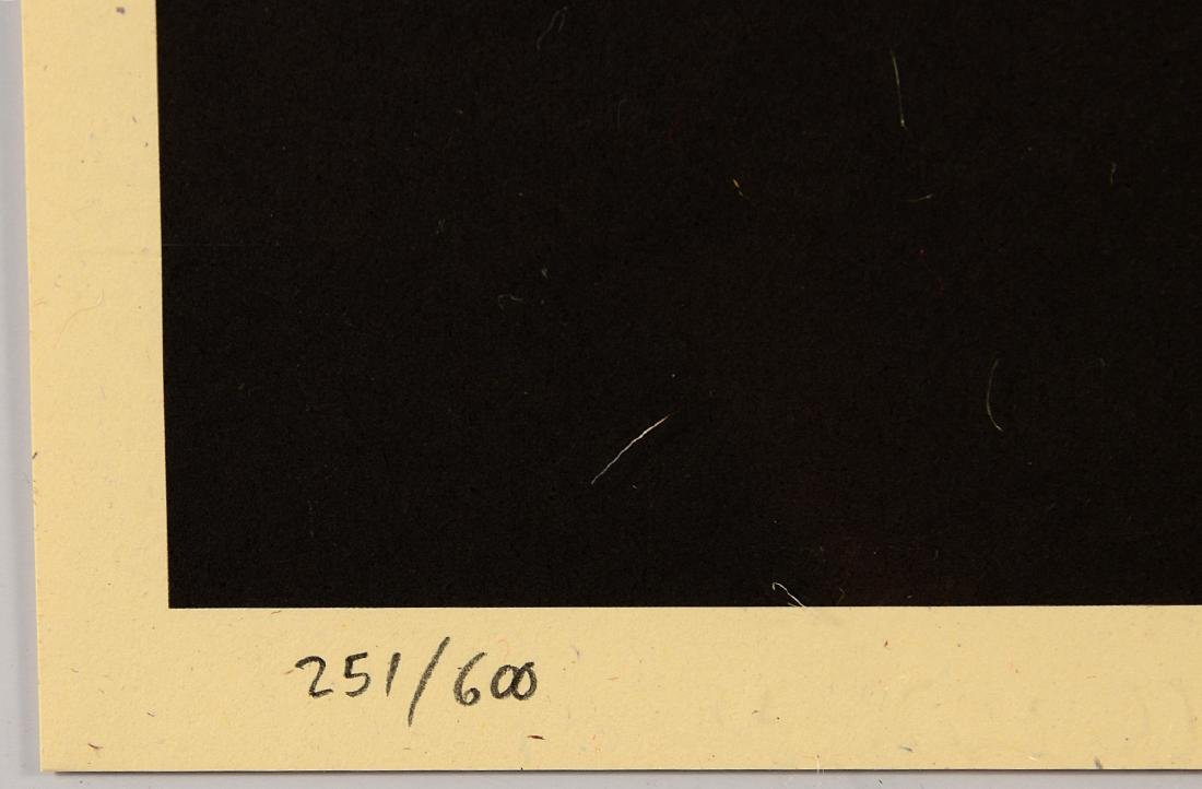 "Shepard Fairey ""Mayday"" Offset Print - 4"