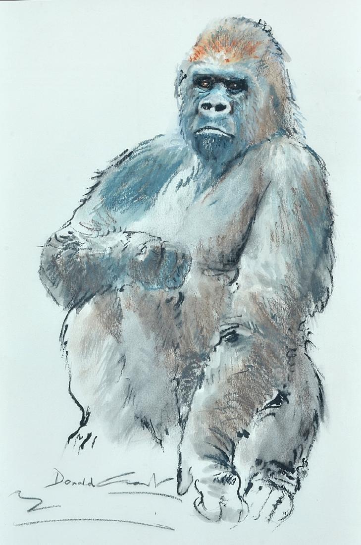 """Donald Grant, """"Male Gorilla"""" Chalk/Watercolor"""
