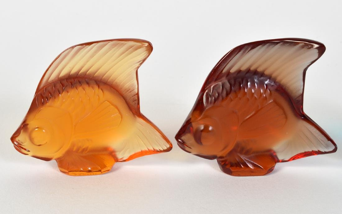 5 Lalique Crystal Colored Fish - 2