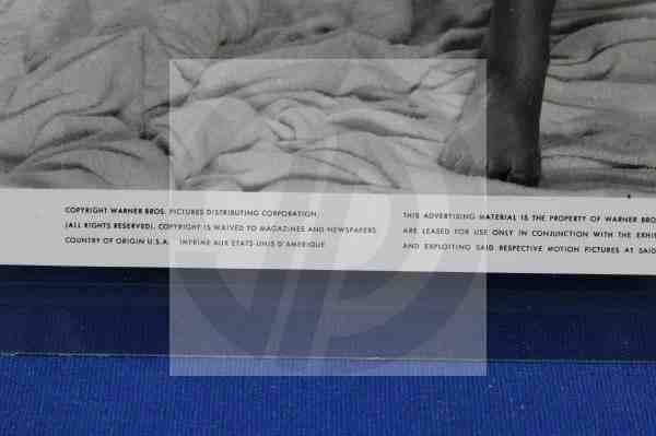1103: CGC Photo Sandra Dee Culver Pictures Archive - 3