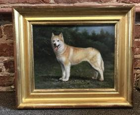 Portrait of Alaskan Huskie