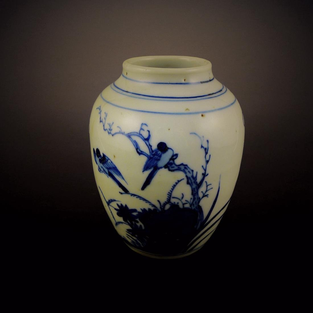 Early Qing Dynasty blue and white pot;