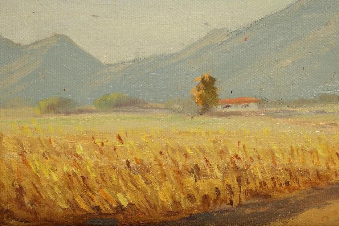 Naomi Taylor Evans California Desert Mountain Landscape - 7