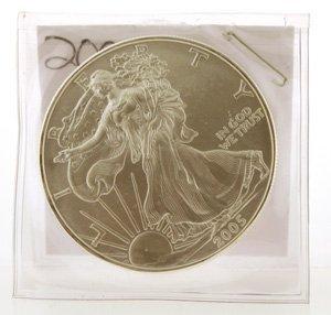 3000: 2005 Walking Liberty Silver Dollar