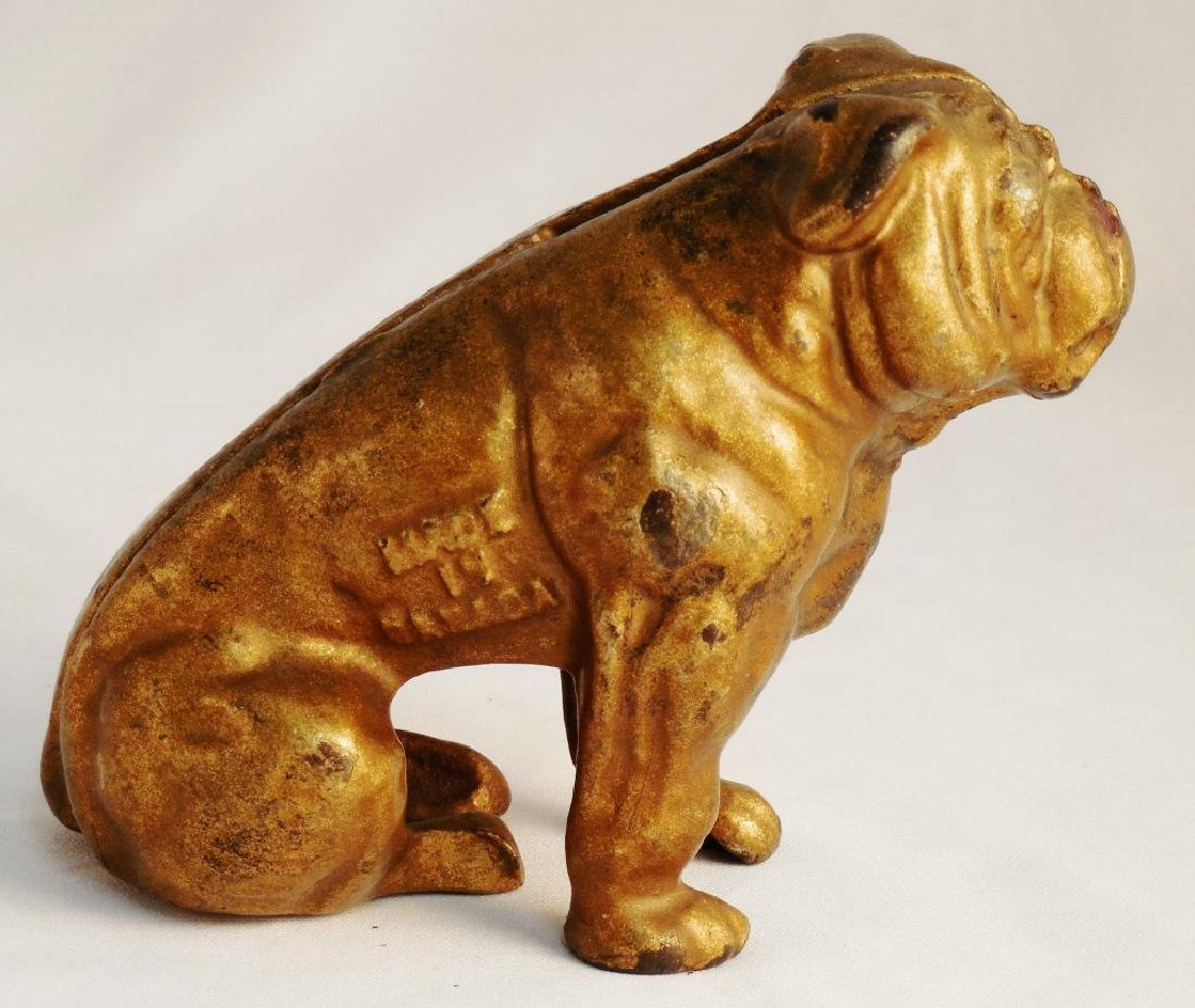 Cast Iron Bull Dog Bank - 3