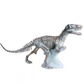 Dinosaur Skelton Free Shipping
