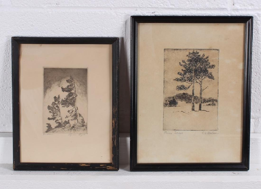 2 Early 20th C American Arboreal Etchings.