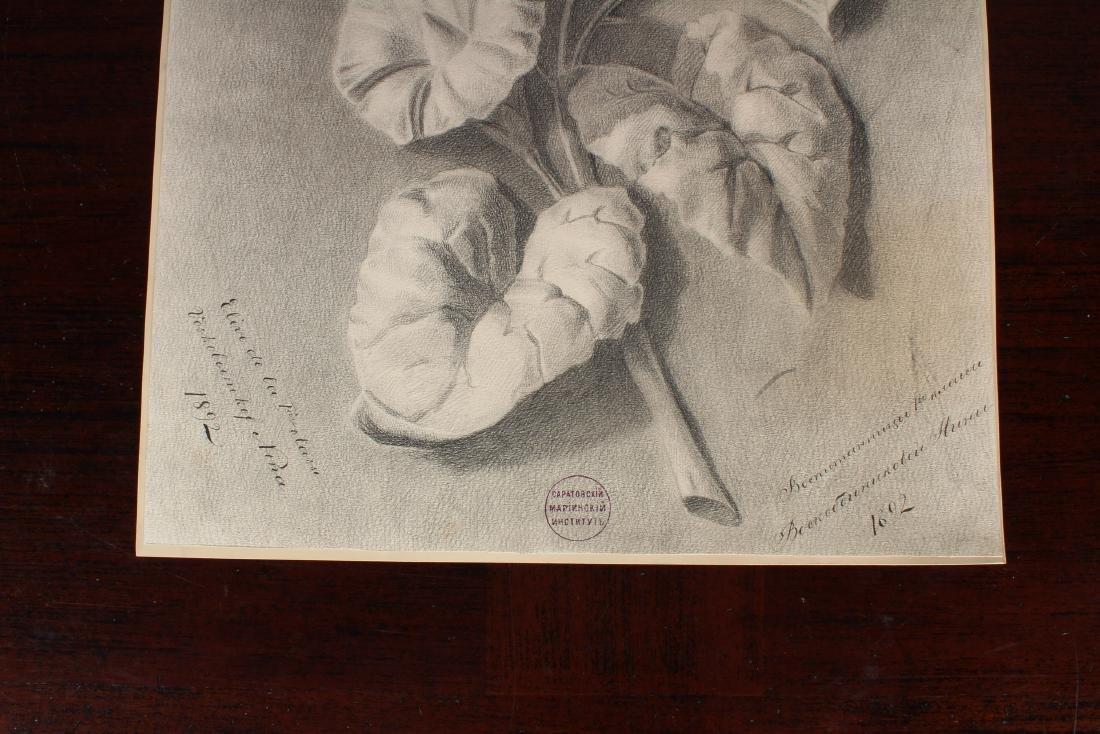 19th C Russian Academic Still Life Drawing - 2