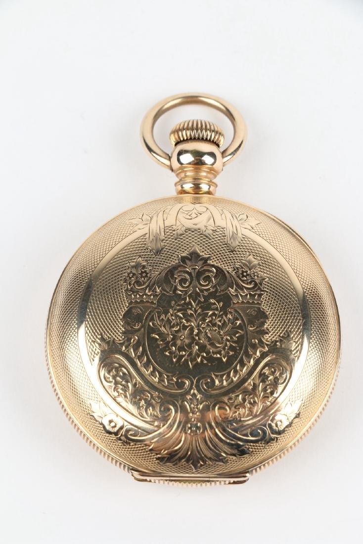 18S 11J Elgin Nat'l Key-Wind Full Hunter Pocket Watch - 3
