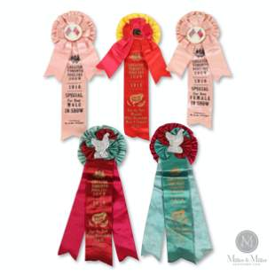 1916 Toronto Poultry Show Award Ribbons