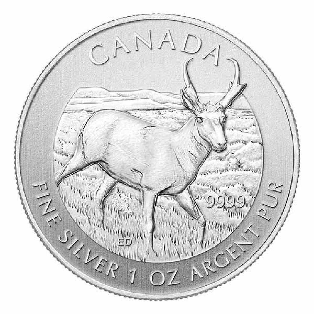 Canadian Silver 1 oz Antelope 2013