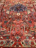 Hand Knotted Persian Bahkteri  8x5 ft
