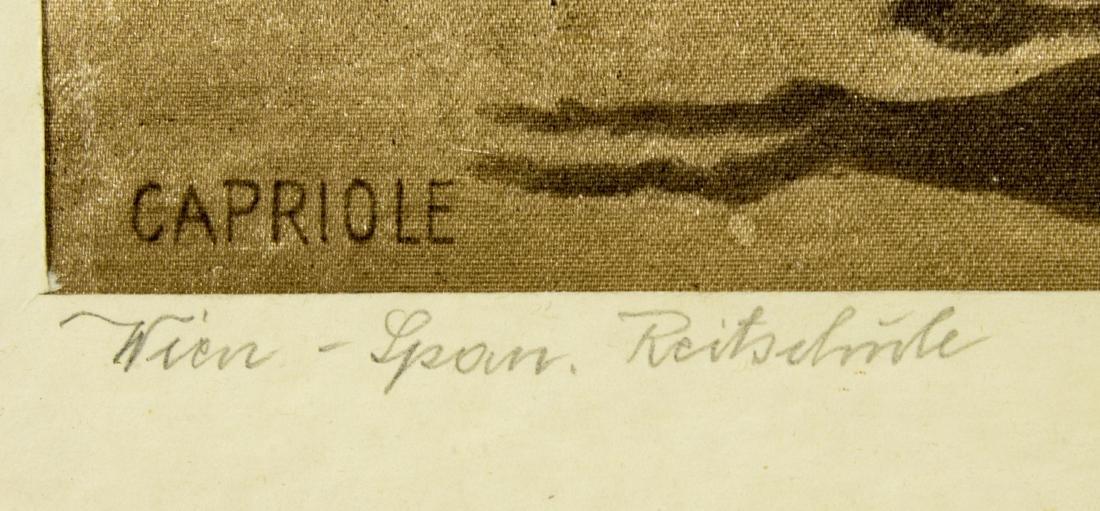 Josef Plank (Austria,born 1900) watercolor on silk - 4