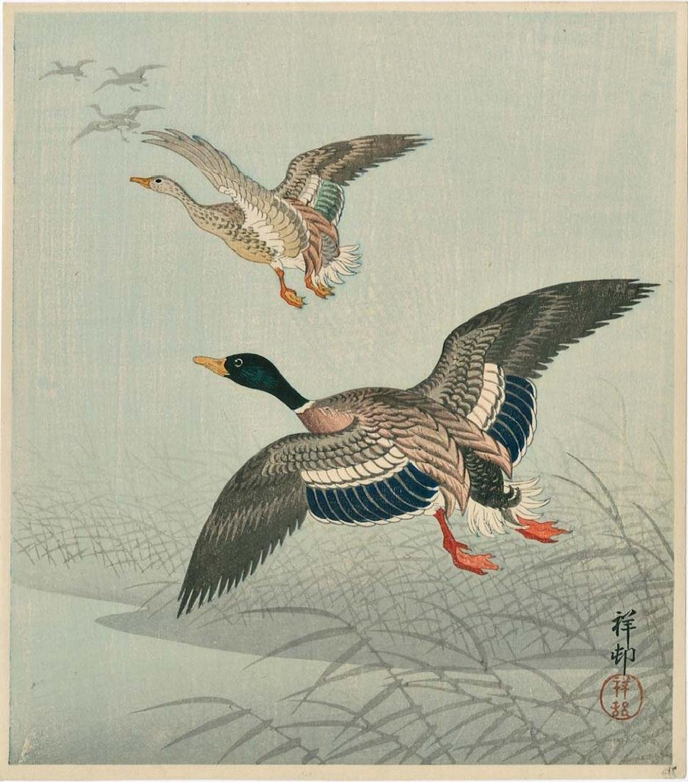 Koson Ohara: White-fronted Geese in Flight Woodblock