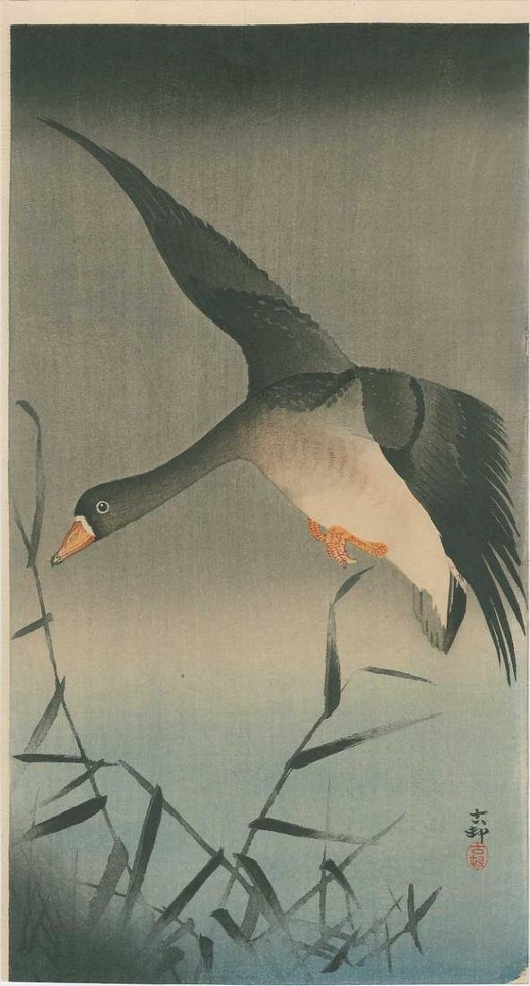 Koson -- White-fronted Goose above Reeds Woodblock