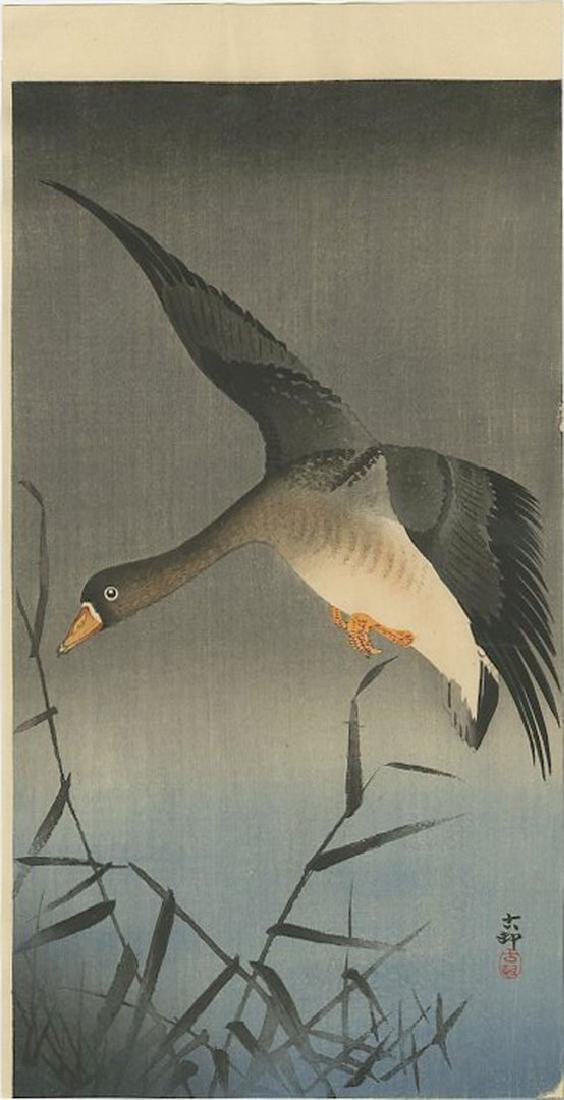 Ohara Koson - White-fronted Goose above Reeds Woodblock