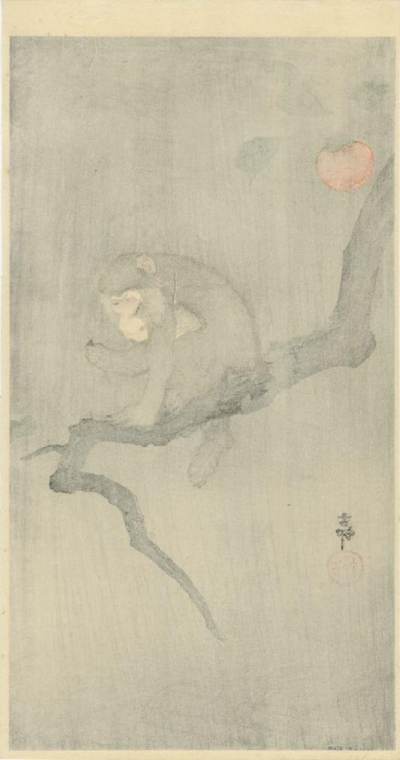 Ohara Koson - Monkey in Persimmon Tree Muller woodblock - 2