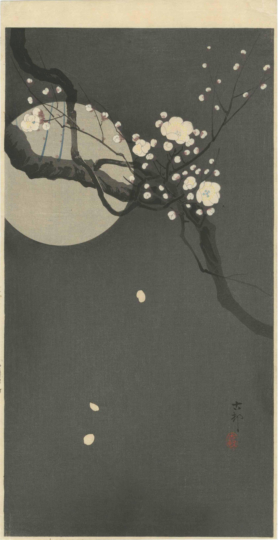 Ohara Koson - Flowering Plum & Moon MULLER Woodblock