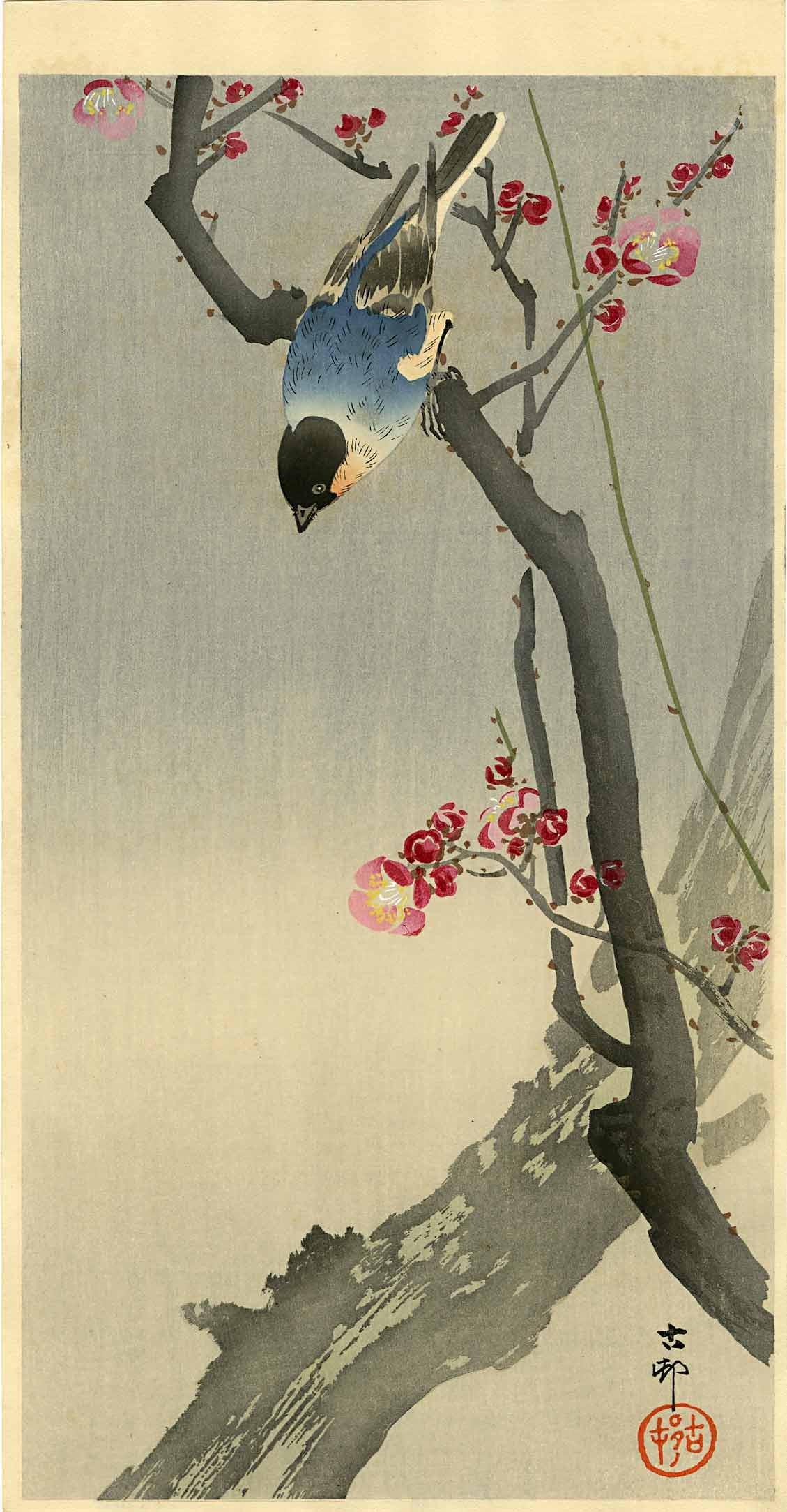 Koson Ohara: Blue Bird on a Plum 1920s Woodblock