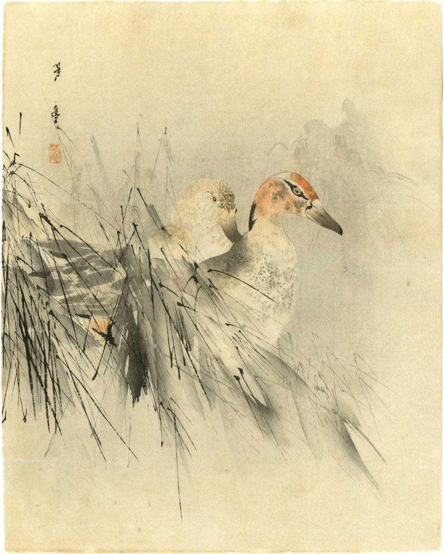 Takeuchi Seiho - Ducks and Reeds c1920s woodblock