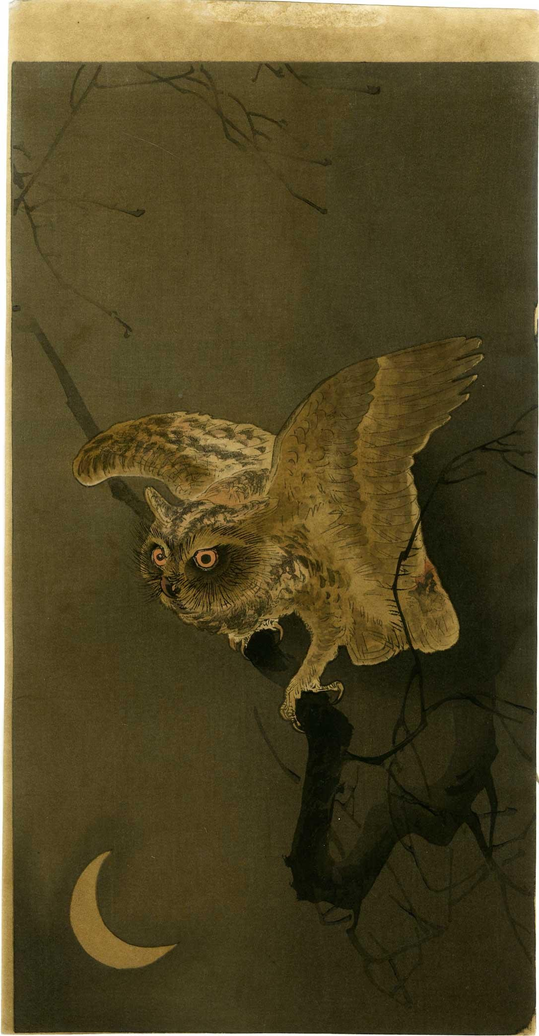 Ohara Koson - Owl and Crescent Moon c1910/23 woodblock