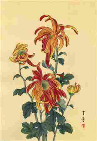 Watanabe Seitei: Chrysanthemum 1930 Woodblock