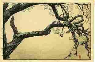 Toshi Yoshida: Plum Tree & Blue Magpie 1951 1st Ed